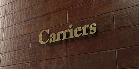 carriers: Carriers - Bronze plaque mounted on maple wood wall  - 3D rendered royalty free stock picture. This image can be used for an online website banner ad or a print postcard.