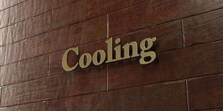 mounted: Cooling - Bronze plaque mounted on maple wood wall  - 3D rendered royalty free stock picture. This image can be used for an online website banner ad or a print postcard.