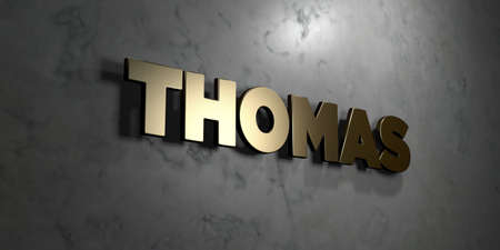 thomas stone: Thomas - Gold sign mounted on glossy marble wall  - 3D rendered royalty free stock illustration. This image can be used for an online website banner ad or a print postcard. Stock Photo
