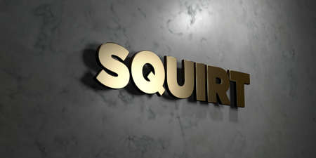 squirt: Squirt - Gold sign mounted on glossy marble wall  - 3D rendered royalty free stock illustration. This image can be used for an online website banner ad or a print postcard.