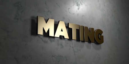 mating: Mating - Gold sign mounted on glossy marble wall  - 3D rendered royalty free stock illustration. This image can be used for an online website banner ad or a print postcard.