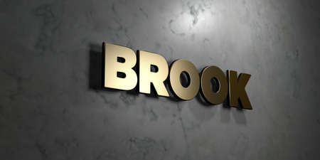 Brook - Gold sign mounted on glossy marble wall  - 3D rendered royalty free stock illustration. This image can be used for an online website banner ad or a print postcard.