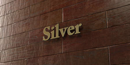 silver maple: Silver - Bronze plaque mounted on maple wood wall  - 3D rendered royalty free stock picture. This image can be used for an online website banner ad or a print postcard. Stock Photo