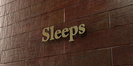 sleeps: Sleeps - Bronze plaque mounted on maple wood wall  - 3D rendered royalty free stock picture. This image can be used for an online website banner ad or a print postcard.