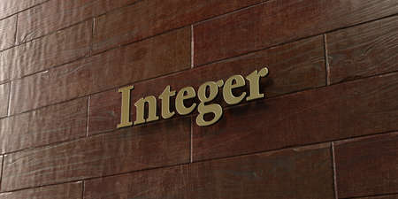 integer: Integer - Bronze plaque mounted on maple wood wall  - 3D rendered royalty free stock picture. This image can be used for an online website banner ad or a print postcard.