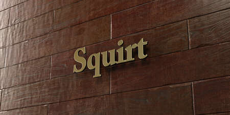 squirt: Squirt - Bronze plaque mounted on maple wood wall  - 3D rendered royalty free stock picture. This image can be used for an online website banner ad or a print postcard.