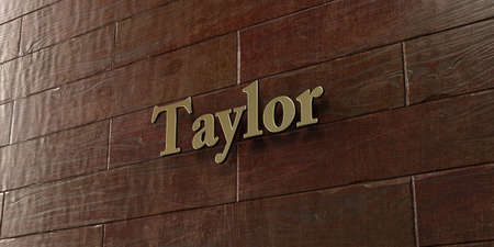 taylor: Taylor - Bronze plaque mounted on maple wood wall  - 3D rendered royalty free stock picture. This image can be used for an online website banner ad or a print postcard.