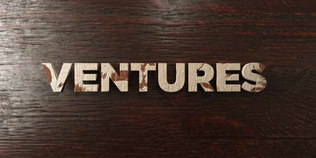 ventures: Ventures - grungy wooden headline on Maple  - 3D rendered royalty free stock image. This image can be used for an online website banner ad or a print postcard. Stock Photo