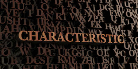 characteristic: Characteristic - Wooden 3D rendered lettersmessage.  Can be used for an online banner ad or a print postcard. Stock Photo