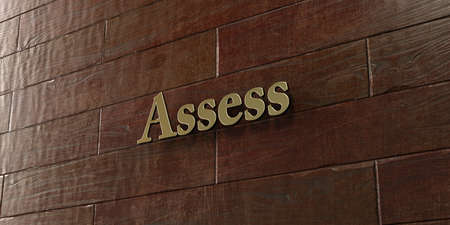 assess: Assess - Bronze plaque mounted on maple wood wall  - 3D rendered royalty free stock picture. This image can be used for an online website banner ad or a print postcard.