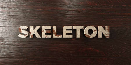 Skeleton - grungy wooden headline on Maple  - 3D rendered royalty free stock image. This image can be used for an online website banner ad or a print postcard. Reklamní fotografie
