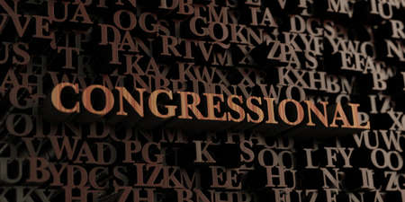 congressional: Congressional - Wooden 3D rendered lettersmessage.  Can be used for an online banner ad or a print postcard.