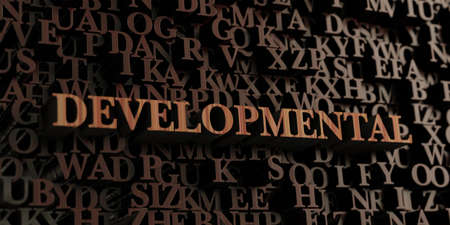developmental: Developmental - Wooden 3D rendered lettersmessage.  Can be used for an online banner ad or a print postcard.