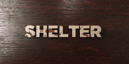 Shelter - grungy wooden headline on Maple  - 3D rendered royalty free stock image. This image can be used for an online website banner ad or a print postcard.