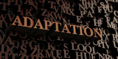 adaptation: Adaptation - Wooden 3D rendered lettersmessage.  Can be used for an online banner ad or a print postcard.