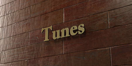 tunes: Tunes - Bronze plaque mounted on maple wood wall  - 3D rendered royalty free stock picture. This image can be used for an online website banner ad or a print postcard.
