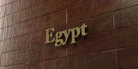 Egypt - Bronze plaque mounted on maple wood wall  - 3D rendered royalty free stock picture. This image can be used for an online website banner ad or a print postcard.