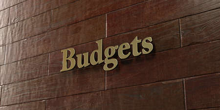 Budgets - Bronze plaque mounted on maple wood wall  - 3D rendered royalty free stock picture. This image can be used for an online website banner ad or a print postcard.