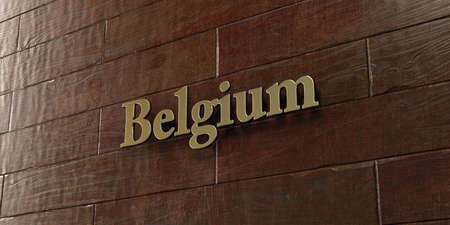 Belgium - Bronze plaque mounted on maple wood wall  - 3D rendered royalty free stock picture. This image can be used for an online website banner ad or a print postcard.
