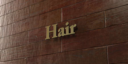 Hair - Bronze plaque mounted on maple wood wall  - 3D rendered royalty free stock picture. This image can be used for an online website banner ad or a print postcard.