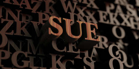 sue: Sue - Wooden 3D rendered lettersmessage.  Can be used for an online banner ad or a print postcard.
