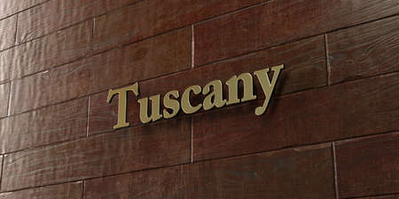 Tuscany - Bronze plaque mounted on maple wood wall  - 3D rendered royalty free stock picture. This image can be used for an online website banner ad or a print postcard.