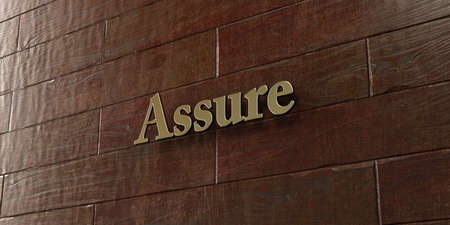 assure: Assure - Bronze plaque mounted on maple wood wall  - 3D rendered royalty free stock picture. This image can be used for an online website banner ad or a print postcard. Stock Photo