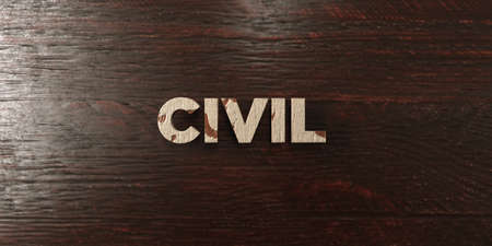 Civil - grungy wooden headline on Maple  - 3D rendered royalty free stock image. This image can be used for an online website banner ad or a print postcard. Zdjęcie Seryjne
