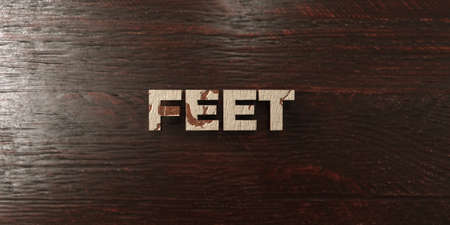 Feet - grungy wooden headline on Maple  - 3D rendered royalty free stock image. This image can be used for an online website banner ad or a print postcard. Stock Photo