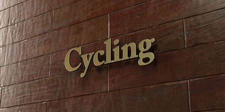 Cycling - Bronze plaque mounted on maple wood wall  - 3D rendered royalty free stock picture. This image can be used for an online website banner ad or a print postcard. Stock fotó