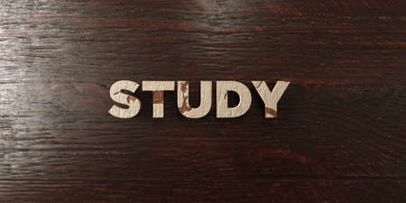 Study - grungy wooden headline on Maple  - 3D rendered royalty free stock image. This image can be used for an online website banner ad or a print postcard.