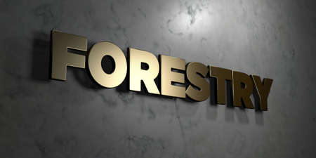 Forestry - Gold sign mounted on glossy marble wall  - 3D rendered royalty free stock illustration. This image can be used for an online website banner ad or a print postcard.