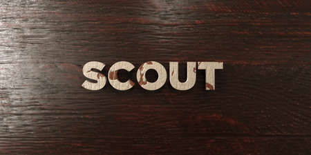 headline: Scout - grungy wooden headline on Maple  - 3D rendered Stock Photo
