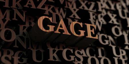 gage: Gage - Wooden 3D rendered lettersmessage.
