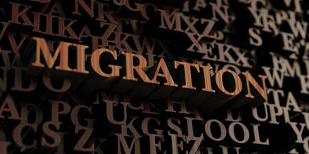 migrating: Migration - Wooden 3D rendered lettersmessage.  Can be used for an online banner ad or a print postcard.