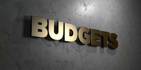 budgets: Budgets - Gold sign mounted on glossy marble wall  - 3D rendered royalty free stock illustration. This image can be used for an online website banner ad or a print postcard.