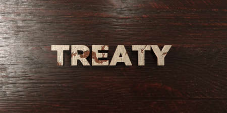 treaty: Treaty - grungy wooden headline on Maple  - 3D rendered royalty free stock image. This image can be used for an online website banner ad or a print postcard. Stock Photo