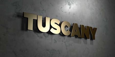 Tuscany - Gold sign mounted on glossy marble wall  - 3D rendered 版權商用圖片