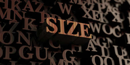 size: Size - Wooden 3D rendered lettersmessage.