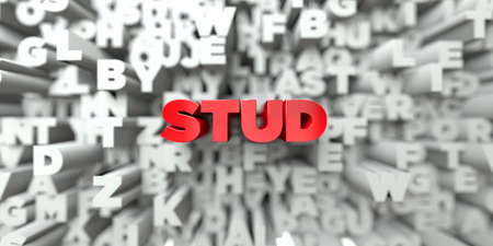 STUD -  Red text on typography background - 3D rendered royalty free stock image. This image can be used for an online website banner ad or a print postcard. Reklamní fotografie