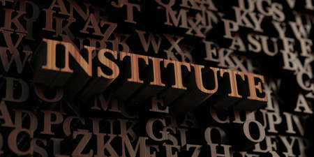 single word: Institute - Wooden 3D rendered lettersmessage.  Can be used for an online banner ad or a print postcard.