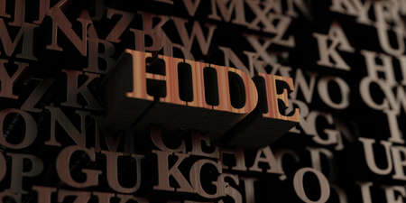 hide: Hide - Wooden 3D rendered lettersmessage.  Can be used for an online banner ad or a print postcard. Stock Photo