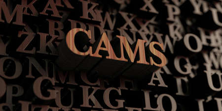 cams: Cams - Wooden 3D rendered lettersmessage.  Can be used for an online banner ad or a print postcard.