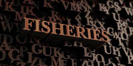 fisheries: Fisheries - Wooden 3D rendered lettersmessage.  Can be used for an online banner ad or a print postcard.