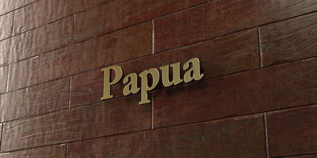 Papua - Bronze plaque mounted on maple wood wall  - 3D rendered royalty free stock picture. This image can be used for an online website banner ad or a print postcard. Stock Photo