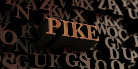 Pike - Wooden 3D rendered letters/message.  Can be used for an online banner ad or a print postcard. Zdjęcie Seryjne - 72463011