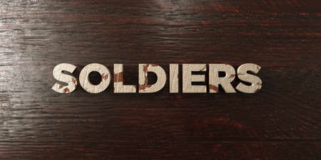 single word: Soldiers - grungy wooden headline on Maple  - 3D rendered royalty free stock image. This image can be used for an online website banner ad or a print postcard. Stock Photo