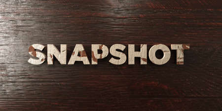 Snapshot - grungy wooden headline on Maple  - 3D rendered royalty free stock image. This image can be used for an online website banner ad or a print postcard. Imagens