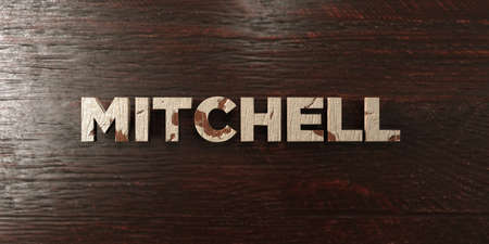 Mitchell - grungy wooden headline on Maple  - 3D rendered royalty free stock image. This image can be used for an online website banner ad or a print postcard. Zdjęcie Seryjne