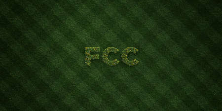 fcc: FCC - fresh Grass letters with flowers and dandelions - 3D rendered royalty free stock image. Can be used for online banner ads and direct mailers.